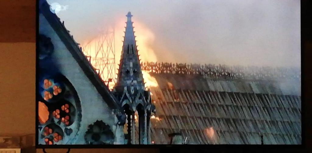 Mein Bild der Woche - Notre Dame brennt