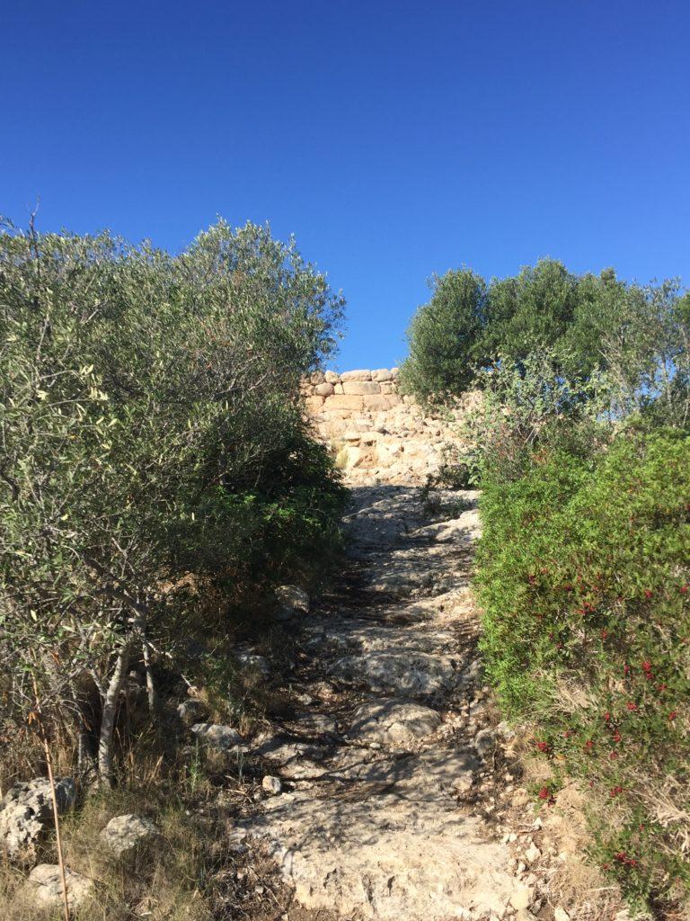 Auf in die Steinzeit zum Puig de Sa Morisca - Weg nach oben