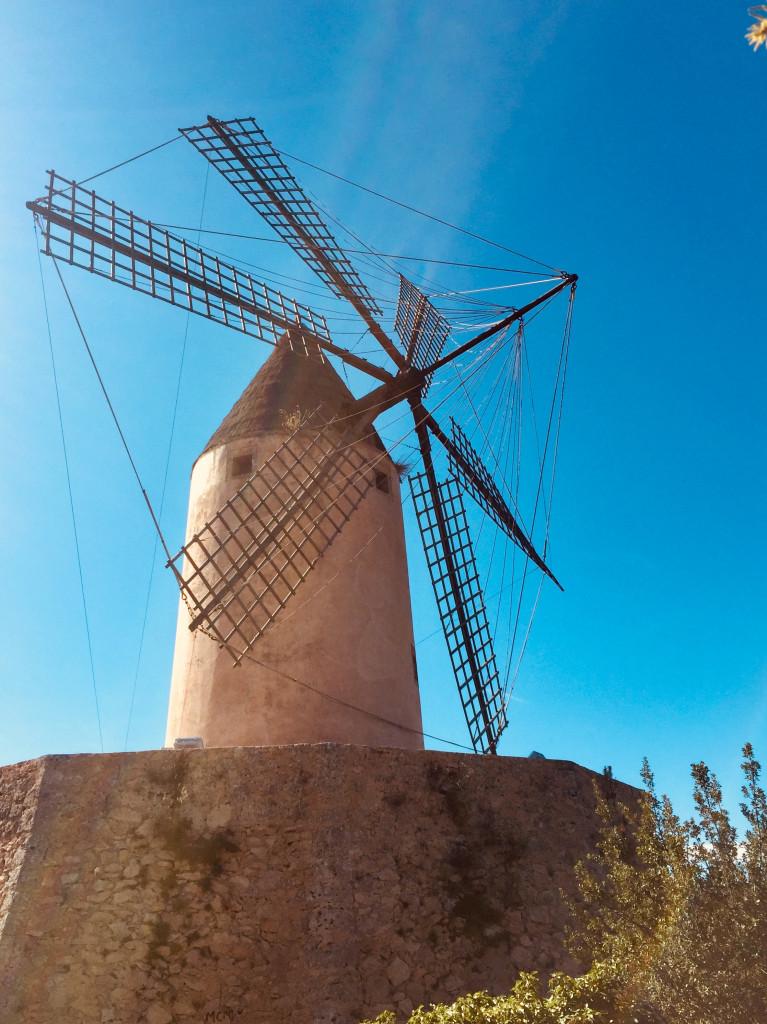 Kleiner Ausflug zur Mühle von Santa Ponsa 1