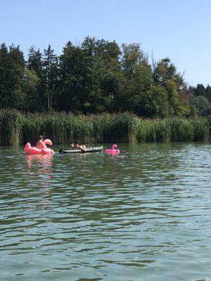 1 toller Tag mit dem Schlauchboot auf der Alz 5