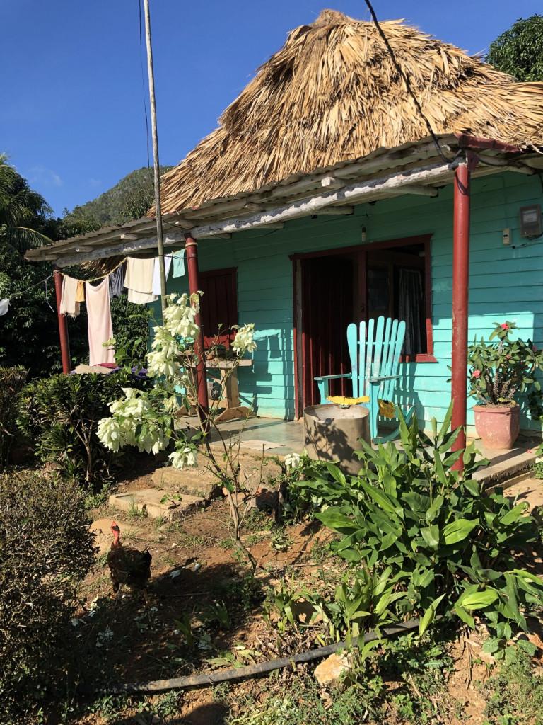 Rundreise durch Kuba Etappe 1 Valle de Viñales 14