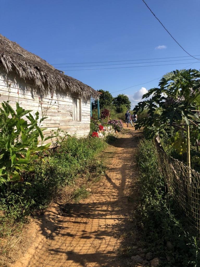 Rundreise durch Kuba Etappe 1 Valle de Viñales 13