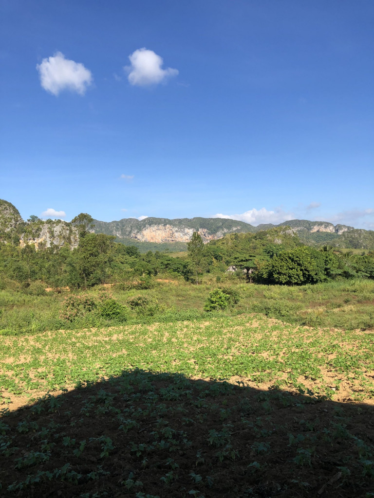 Kuba-Rundreise: 1. Etappe Valle de Viñales - Frühstücksblick