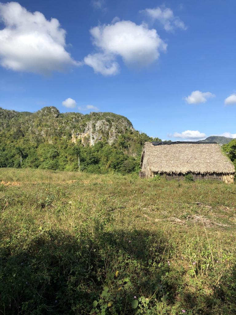 Rundreise durch Kuba Etappe 1 Valle de Viñales 15