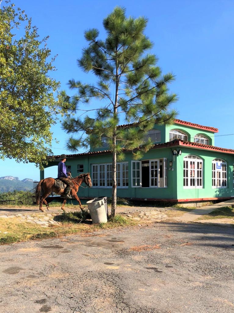 Kuba-Rundreise: 1. Etappe Valle de Viñales, Cowboy
