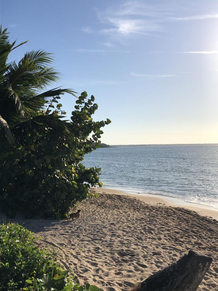 Rundreise durch Kuba Etappe 2 Playa Larga 7