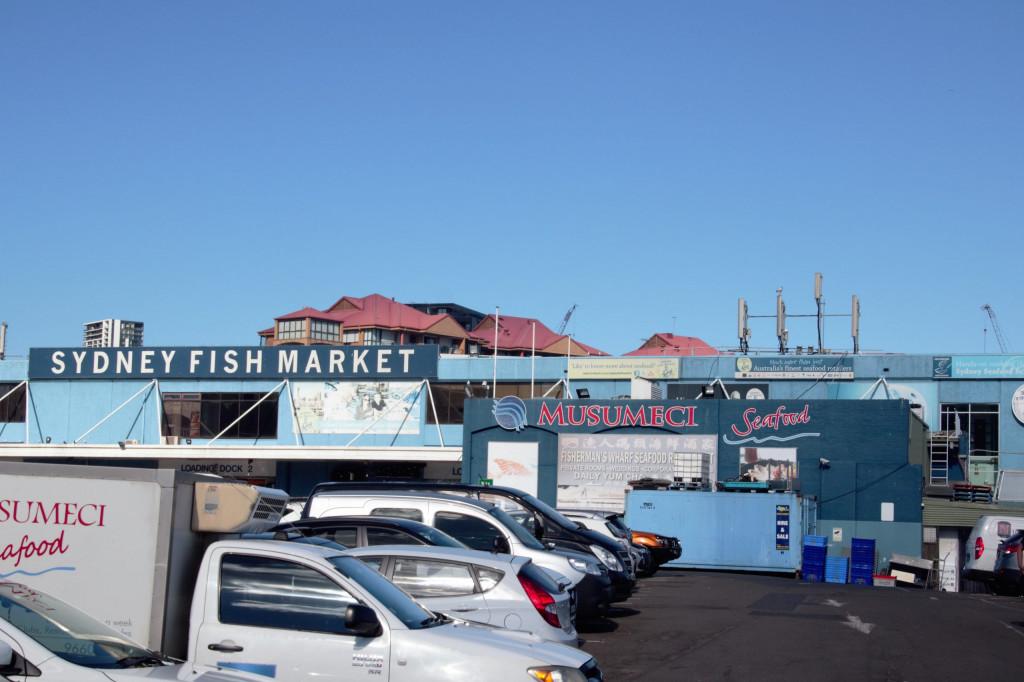 Sydney in 7 Tagen - Sydney Fish Market