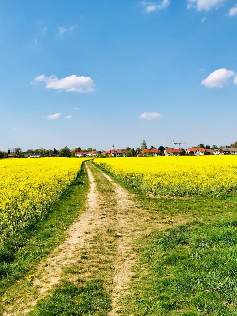 Fernweh 2021 - lange Spaziergänge in der unmittelbaren Umgebung