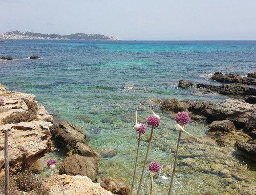 1. Mallorca Urlaub in Corona Zeiten