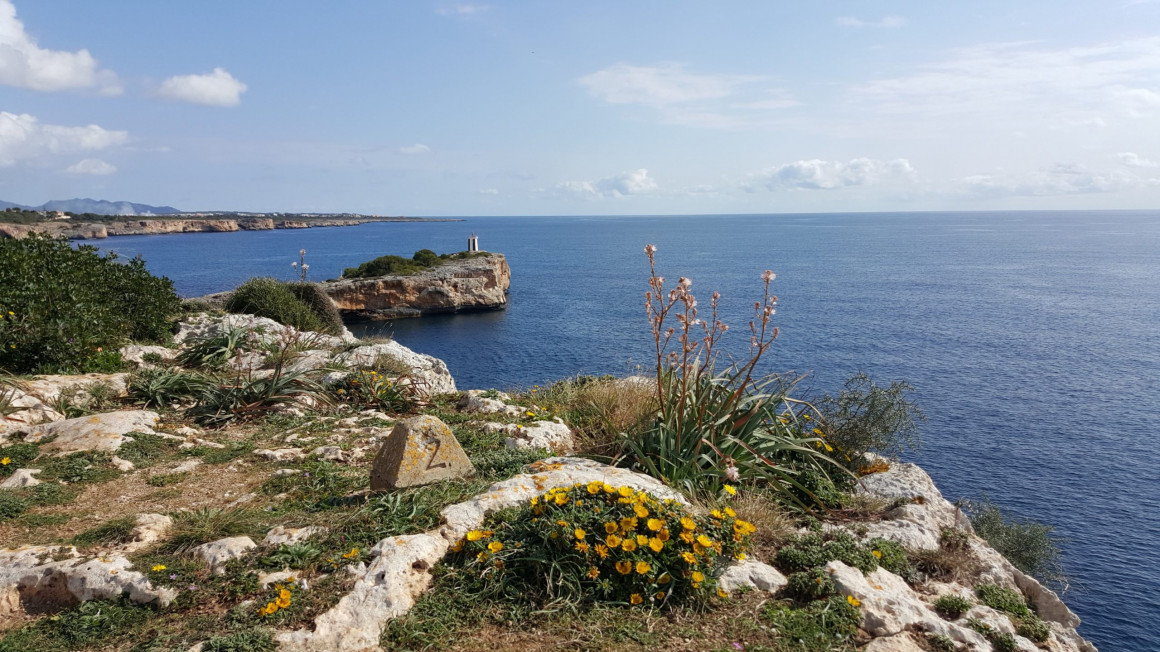 Mallorca in Daten und Fakten