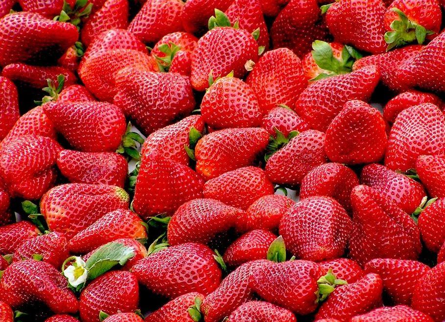 Was du schon immer über Erdbeeren wissen wolltest