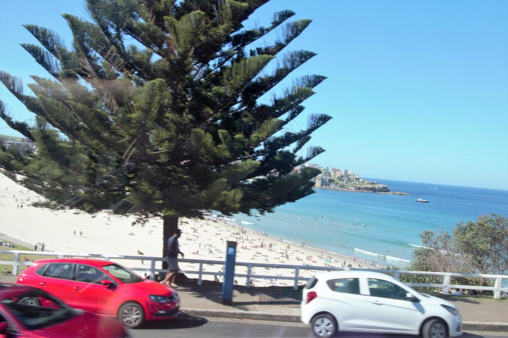 Sydney in 7 Tagen 19