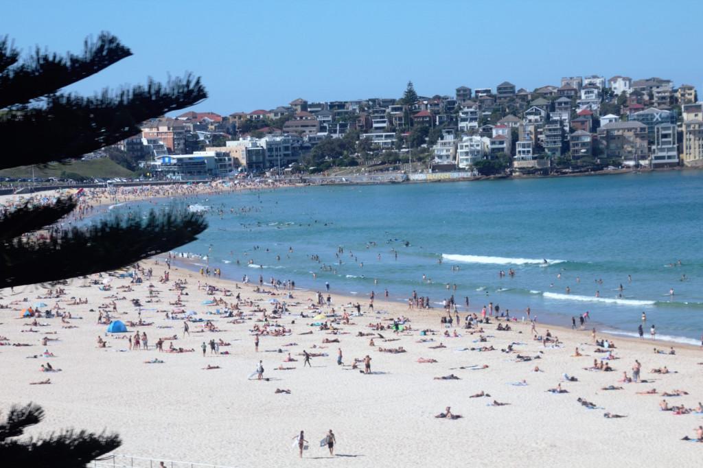 Sydney in 7 Tagen 17
