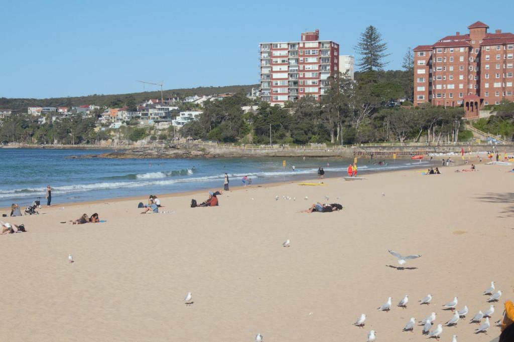 Sydney in 7 Tagen 26