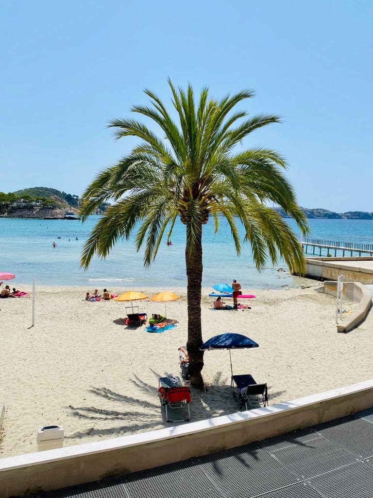 Mallorca Urlaub in Corona Zeiten - Peguera