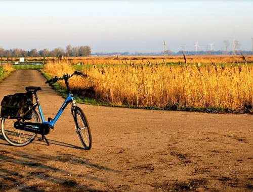 Bist du etwa zu faul zum Treten? E-Bikes für Faule?