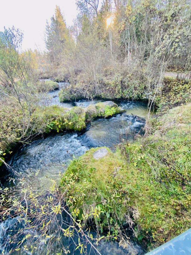 7 Kostbarkeiten am Isarkanal - die Fischtreppe