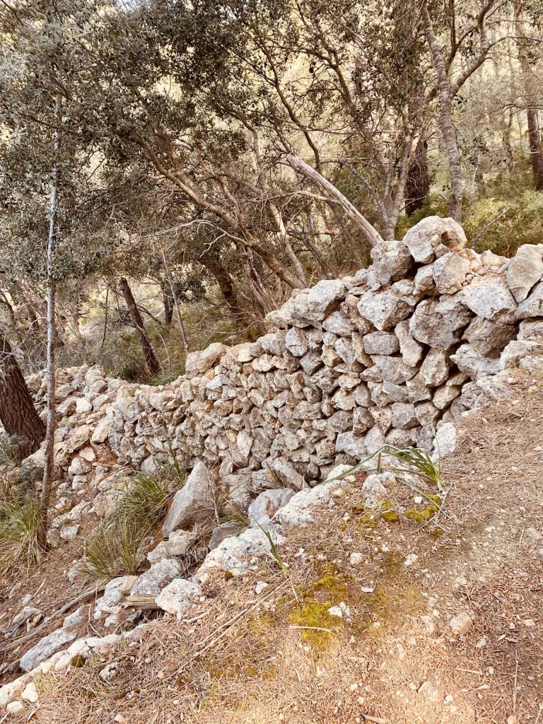 Mallorca und die Trockensteinbauten - diese Mauer braucht Betreuung