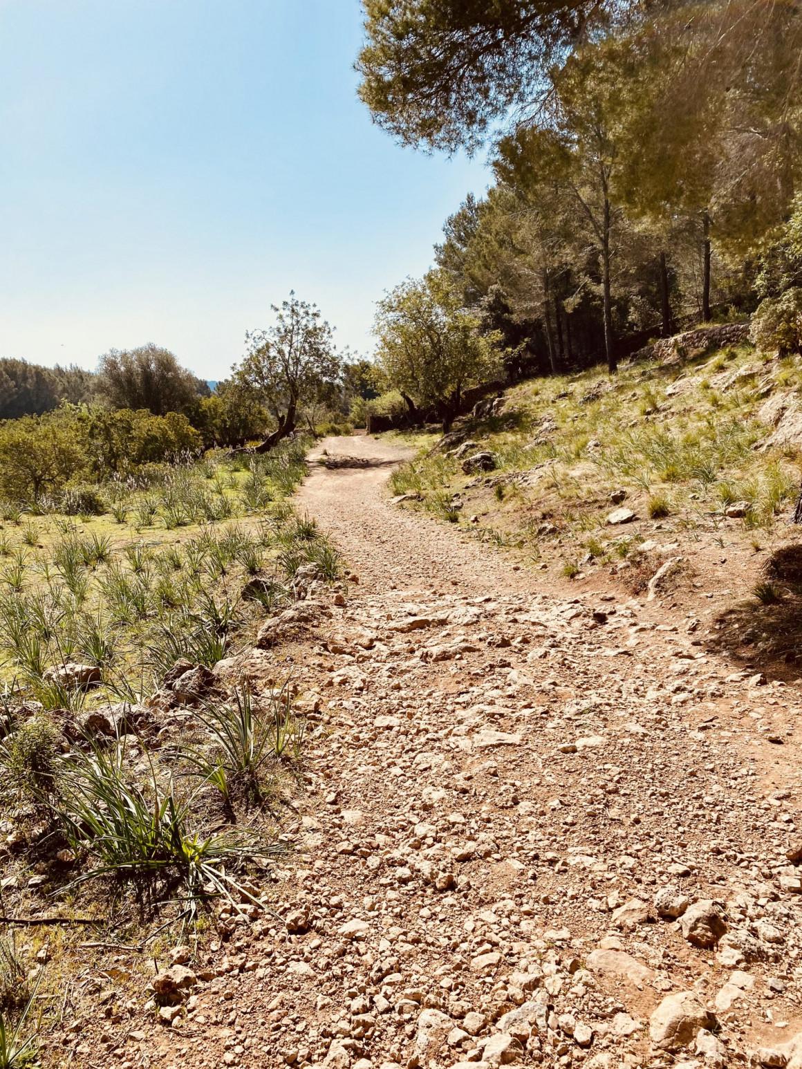 Mallorcas zielgenaue Steinschleuderer - Mallorca ist steinreich Teil 1