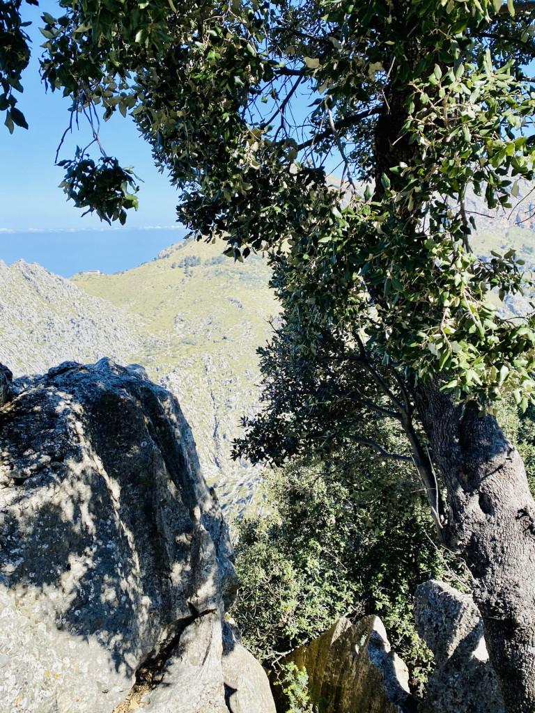 Sa Calobra und Torrent de Pareis - der Weg ist das Ziel
