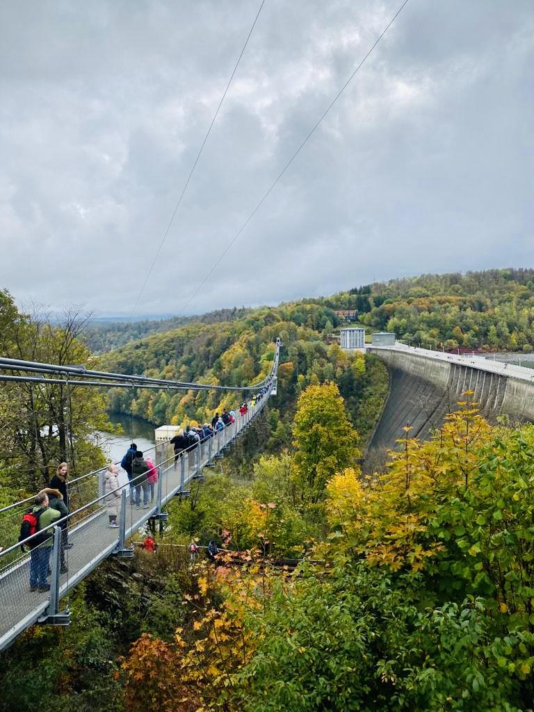 In den Harz - 8 Reisetipps für Naturliebhaber und Entdecker 13