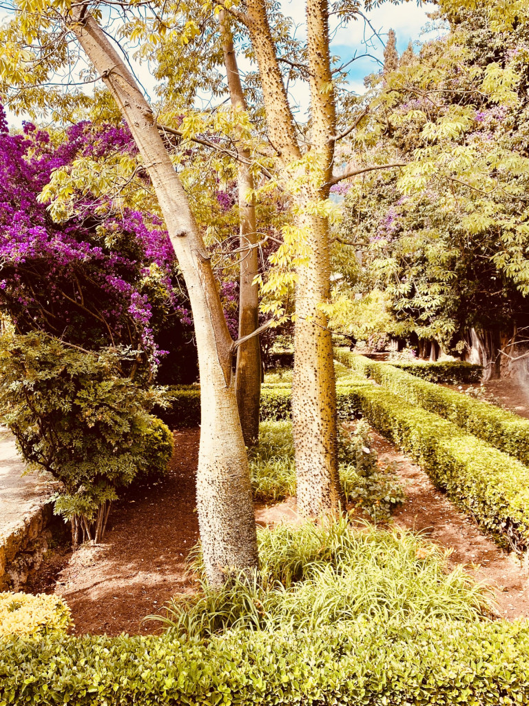 Jardines de Alfabia Mallorca - Super in der Sommerhitze 9