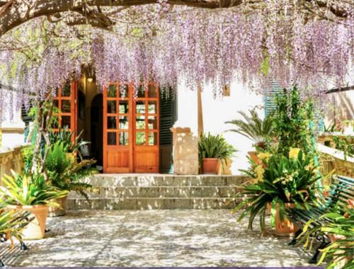 Jardines de Alfabia Mallorca - Super in der Sommerhitze