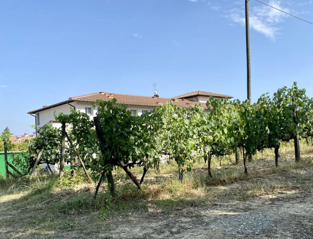 Hilton Grand Vacations Club in der Toscana - 10 Urlaubstage 2