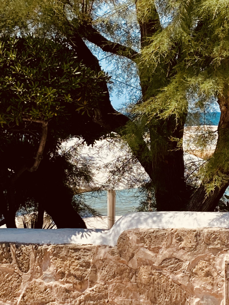Strandrestaurant El Bungalow in Ciudad Jardin - lässig relaxed auf Mallorca 1